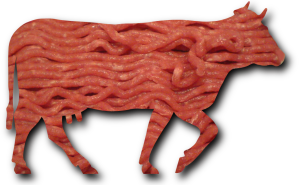 Minced_beef_meat_cow_cattle_shadow