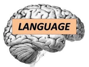 Language_human_brain